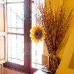 Ventana con Flores Casa Rural Mas els Vilars